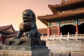 Съкровищата на Китай 2019
