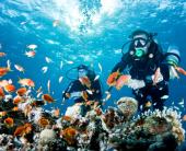 Перлите на Египет- Кайро и Хургада- хотел  Hurghada Long Beach Resort 4*
