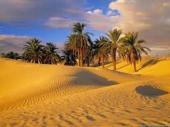 Почивки в Тунис - хотел Vincci  Nozha Beach 4*